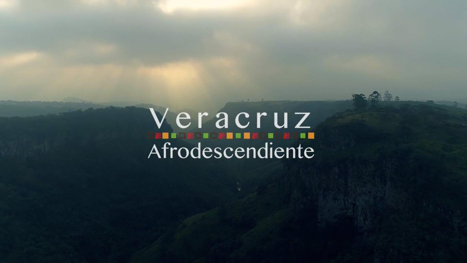 Veracruz Afrodescendiente