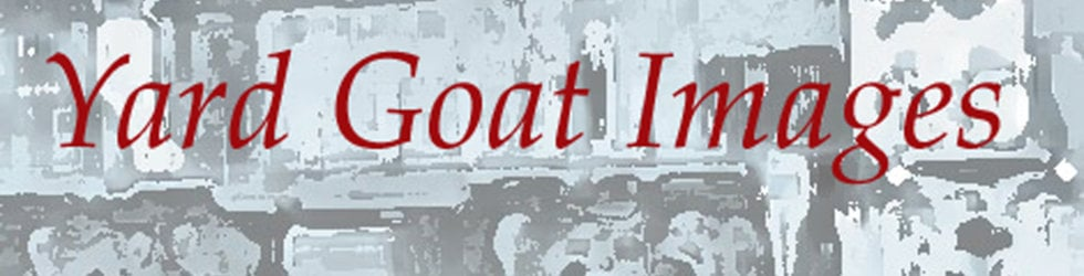 Yard Goat Images Steam Channel