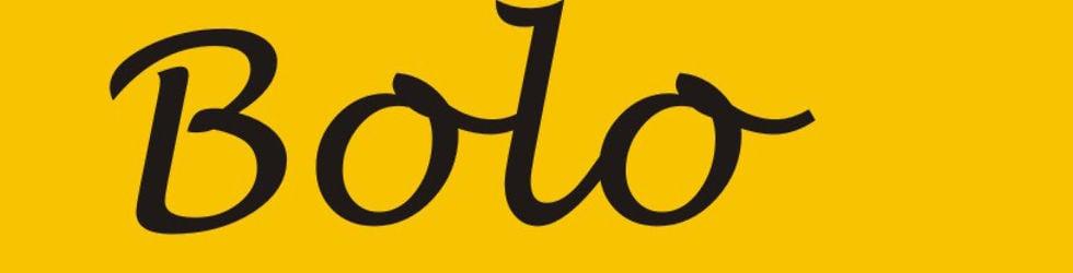Project Bolo