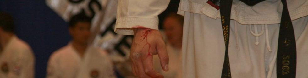 Son Jong-Ho Classic Taekwondo