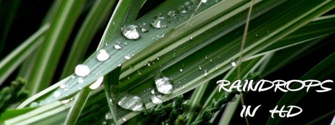 Raindrops in HD