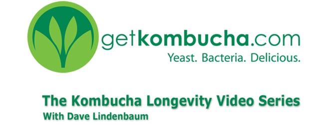 Kombucha Longevity Video Series'