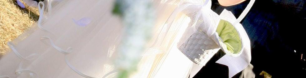 Mariage Montreal Wedding