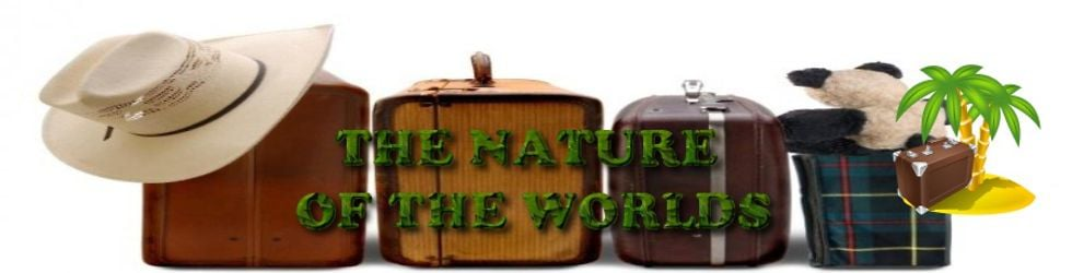 THE NATURE OF THE WORLDS