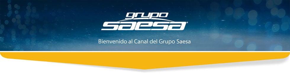 Grupo Saesa