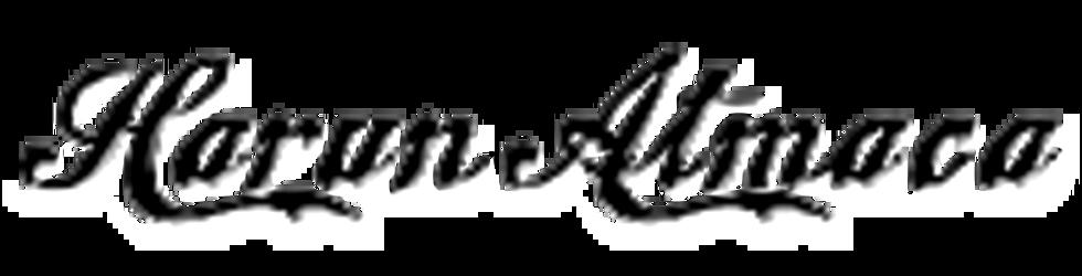 TÜRKÜCÜ
