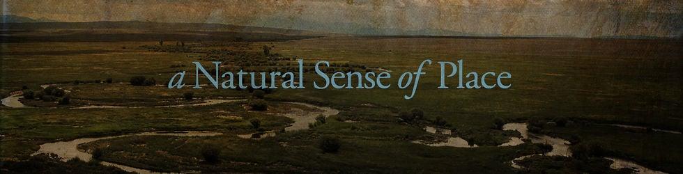 A Natural Sense of Place