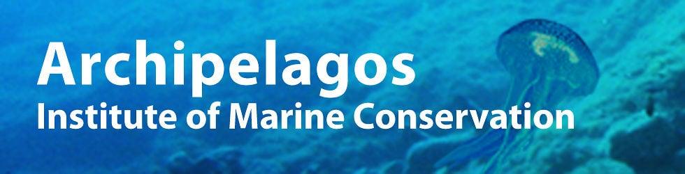 Archipelagos, Institute of Marine Conservation