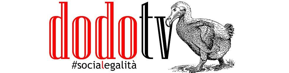 DodoTV