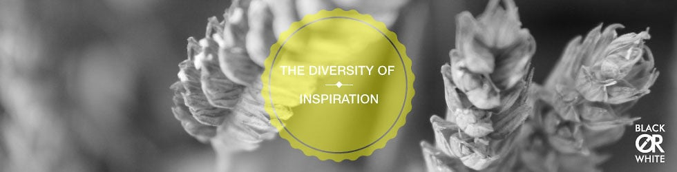 BlackorWhite - The diversity of inspiration