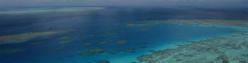 GREAT BARRIER REEF Reef Today Series