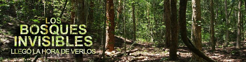 Los Bosques Invisibles