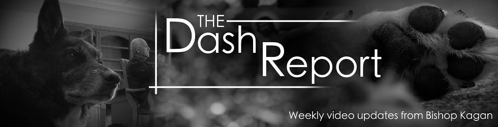 The Dash Report