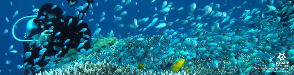 Underwater Films HD