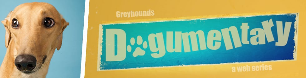 Greyhounds: The Dogumentary