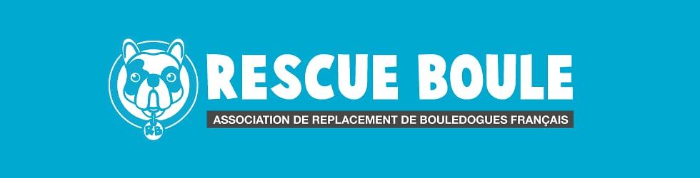 Chaine de l'association Rescue Boule