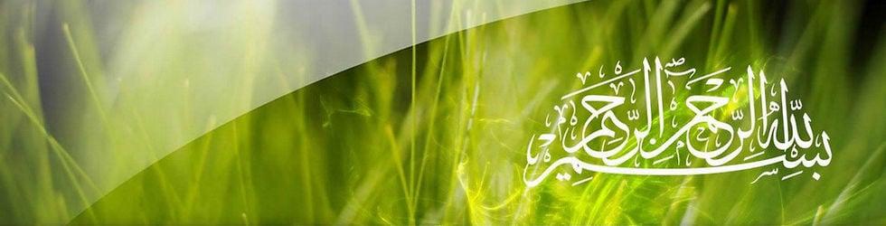 International Islamic Image