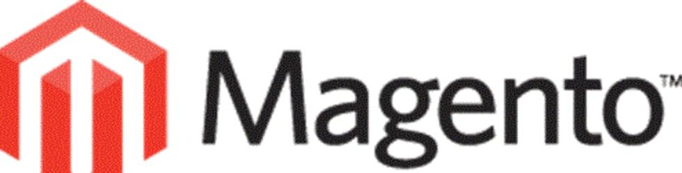 Magento Developers