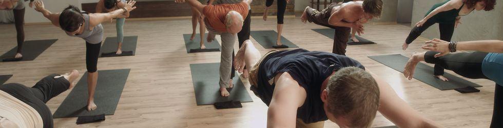 Yoga Warrior 365