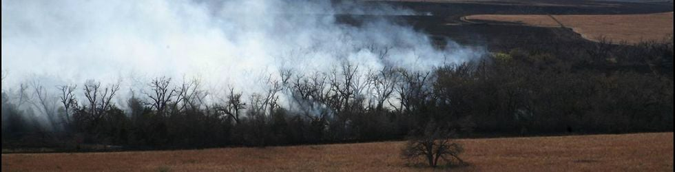 Fire Ecology and Management of Texas Oak Woodlands
