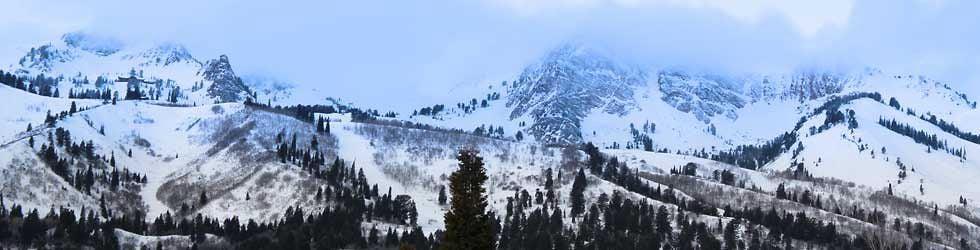 Ski Race Training