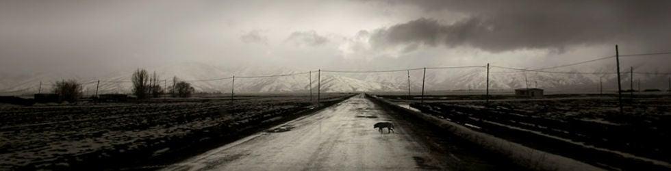 SNOW - FilmLab -