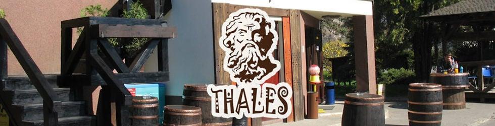 Thales Falticeni
