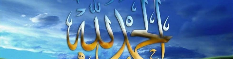 ضياء القرآن