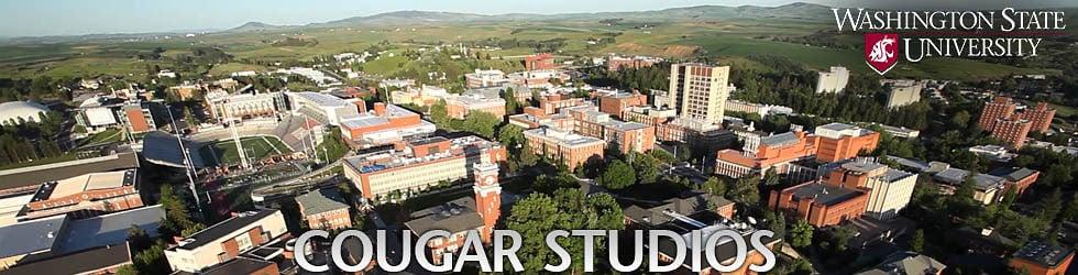 Cougar Studios