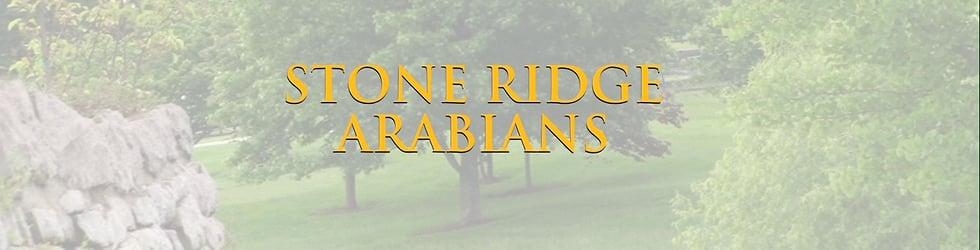 Stone Ridge Arabians