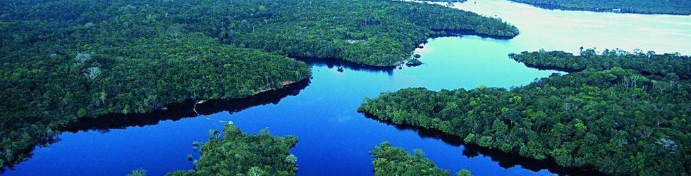 Hope of the Amazon  Civil Association- Esperanza de la Amazonía