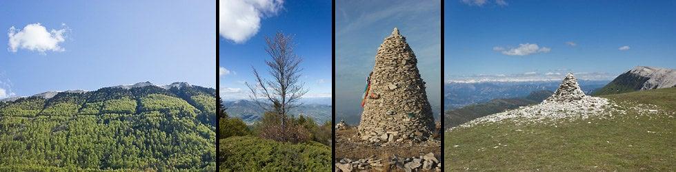 Montagne de Lure - Faune flore et paysages à l'adret, l'ubac et sur les crêtes