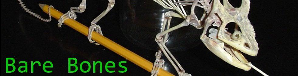 Bare Bones TextVook