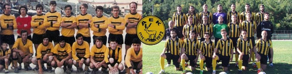Αθλητική Ένωση Κοζάνης
