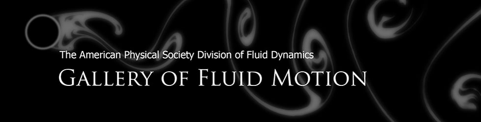 Gallery of Fluid Motion