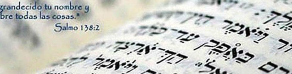 La Biblia verso por verso