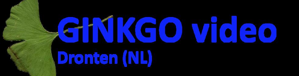 Ginkgo video