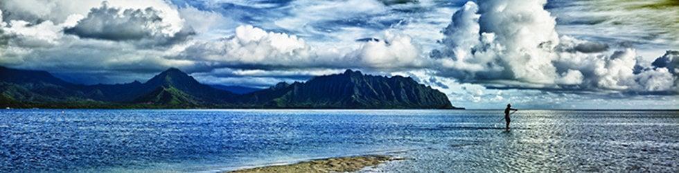 Tropical Blends Hawaii
