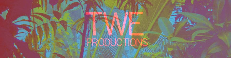 TWE Productions- Original Music and Sound Design for Visual Media