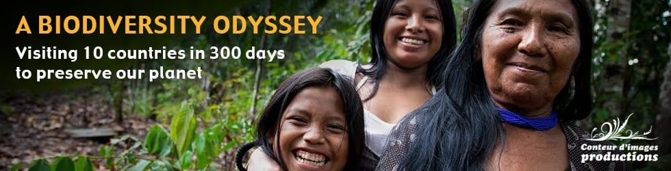 A Biodiversity Odyssey | The webserie