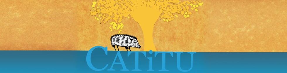 Instituto Catitu (versão português)