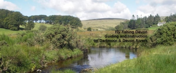 Fly Fishing Devon: Instruction and Guiding on Dartmoor rivers