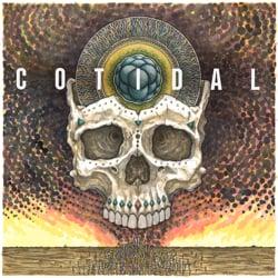 Cotidal