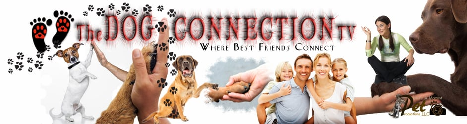 The Dog Connection TV
