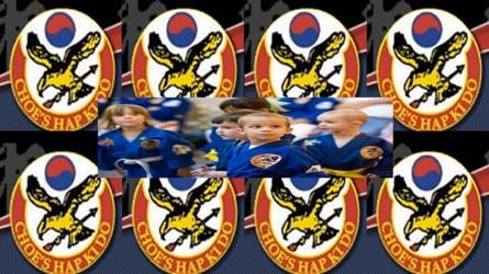 Choe's HapKiDo Karate Classes in Suwanee Ga