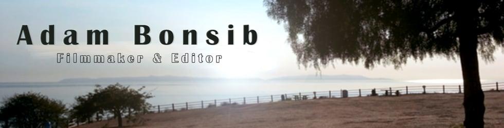 Adam Bonsib Editing Samples