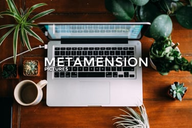 Metamension Pictures