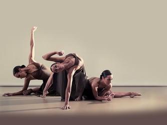 Samadhi Dance Company - Serve the (He)Arts