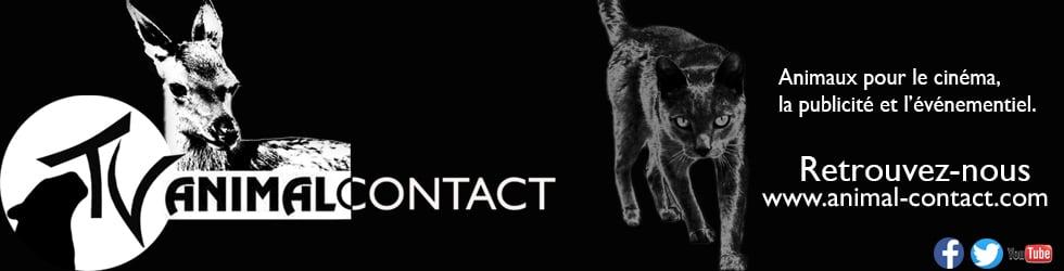 Animal-contact