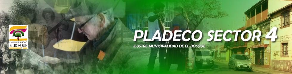 Pladeco Sector 4 El Bosque